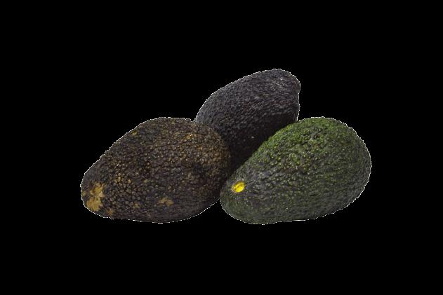 Organik Avokado (1 adet, 140-170gr)