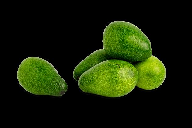 Organik Avokado
