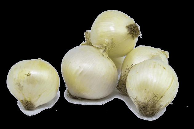 Beyaz Soğan (1kg)