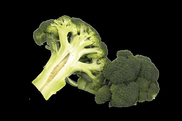 Organik Brokoli