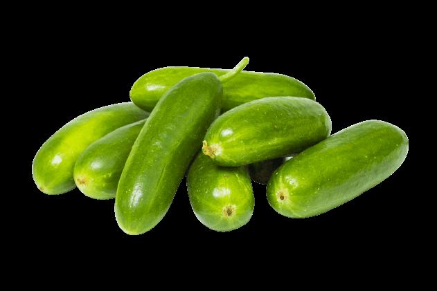 Organik Çengelköy Badem Salatalık