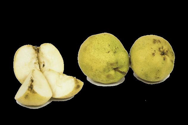 Organik Deveci Armudu (1kg)