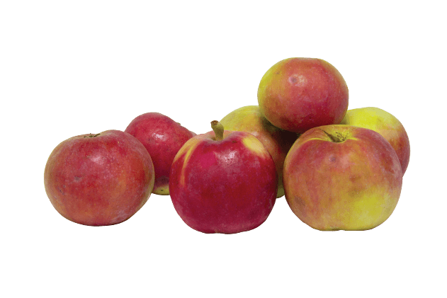 Organik Elma (1kg)