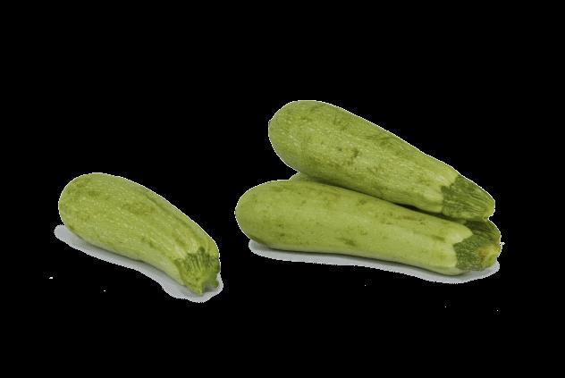 Organik Kabak