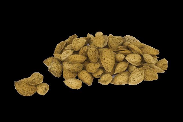 Organik Kabuklu El Bademi (250gr)
