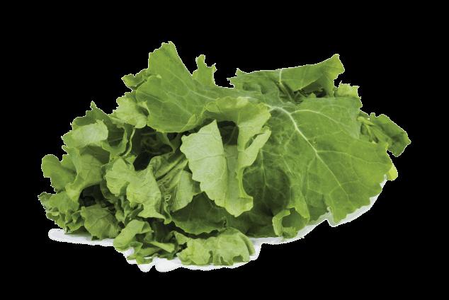 Kale (1 demet)