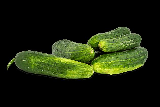 Organik Kornişon Salatalık (500gr)