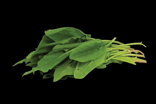 Organik Kuzu Kulağı (1 demet)
