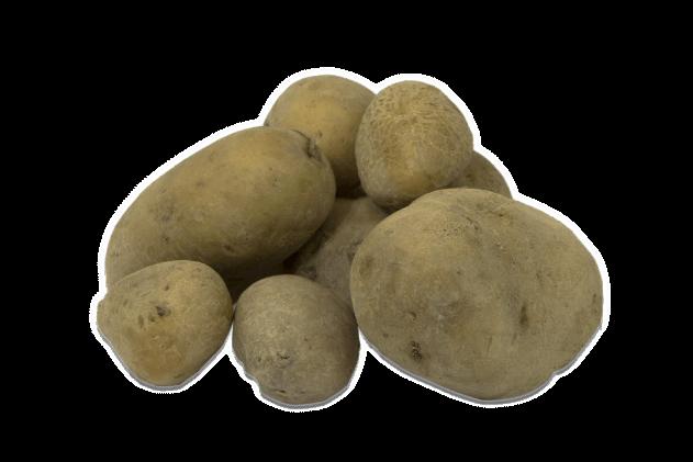 Organik Patates (1kg)
