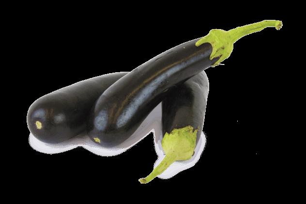Organik Patlıcan (1kg)
