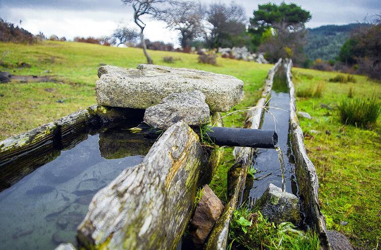 Suyun sağlığımız için önemi