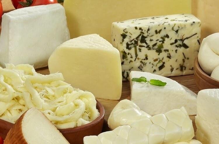 Peynir şölenli dolma tarifi