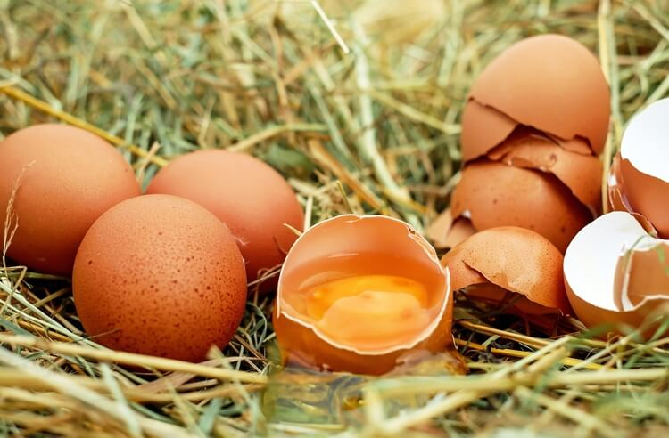 Doğal, organik veya endüstriyel yumurta, hangisi?