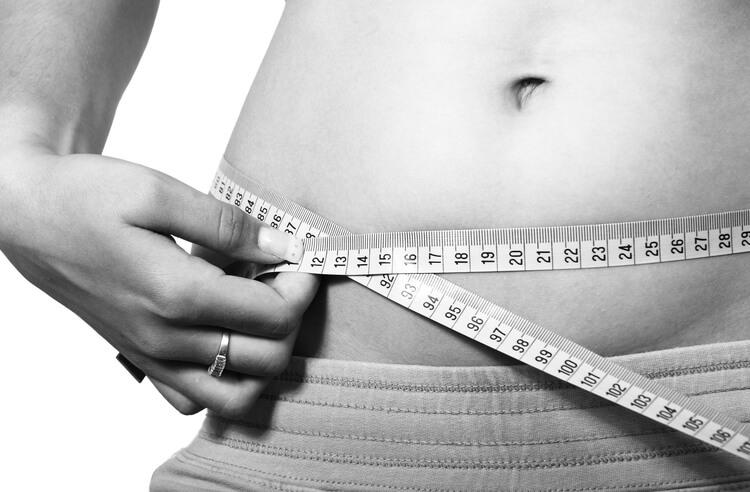 Dukan diyetine bir bakış