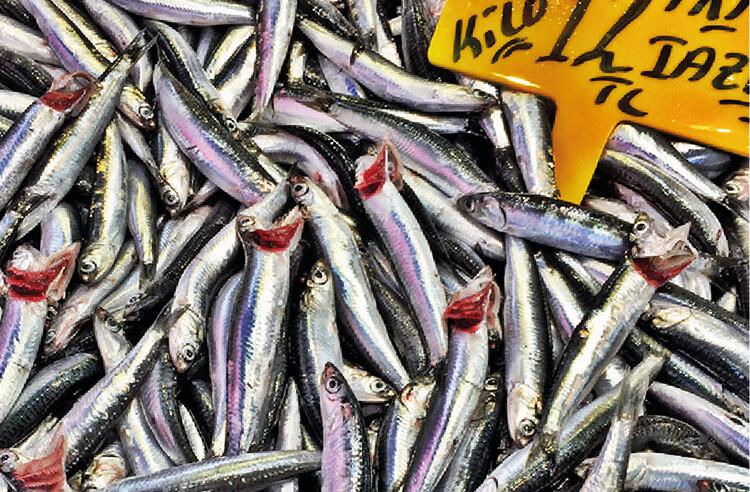 Balığın ardından yenen tahinin faydaları