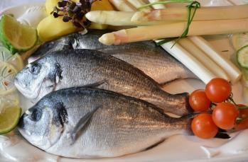 Hangi balık hangi mevsimde tüketilmelidir?