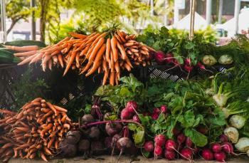 Çok sağlıklı 12 kök sebze