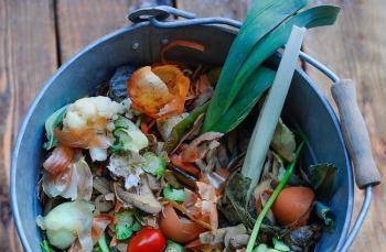 Evinizde organik atıklarınızdan kompost yapın.