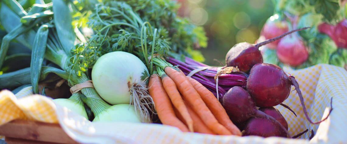 Organik ve katkısız gıdalar nasıl saklanır?