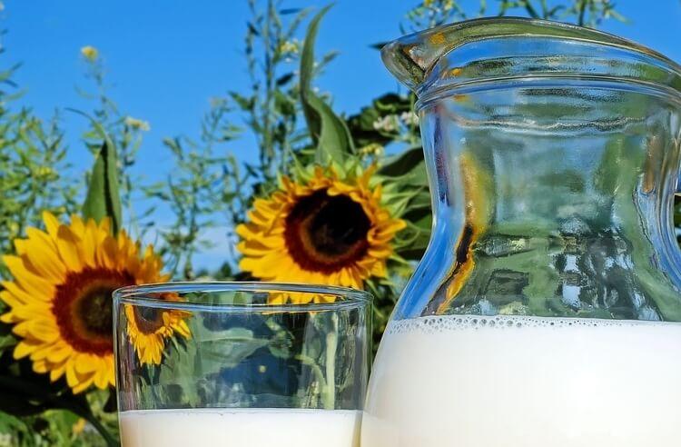 Bozuk süt nasıl anlaşılır?