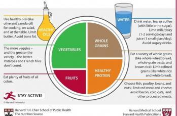 Sağlıklı beslenme tabağı nasıl olmalı?
