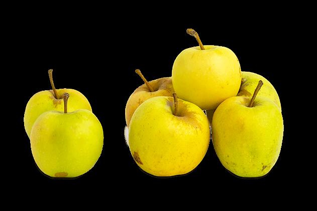 Organik Sarı Elma (1kg)