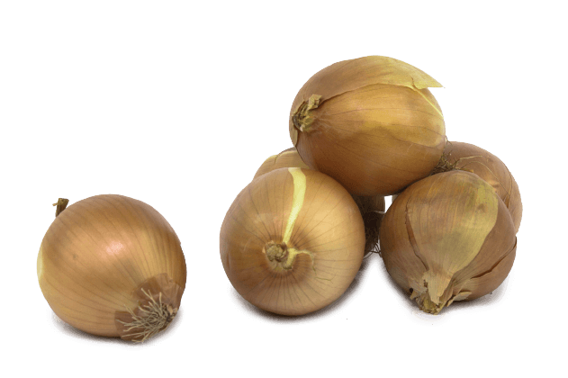 Organik Soğan (1kg)
