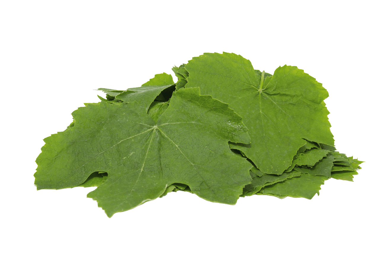 Organik Taze Asma Yaprağı-Hafif Sarı (400gr)