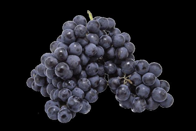 Organik Üzüm - Siyah (500gr)