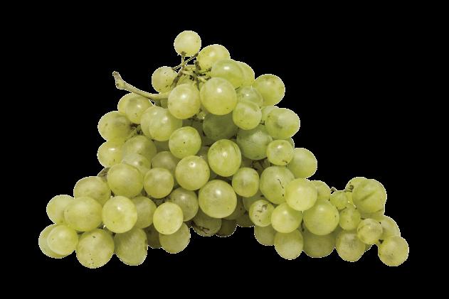 Üzüm-Yeşil (500gr)