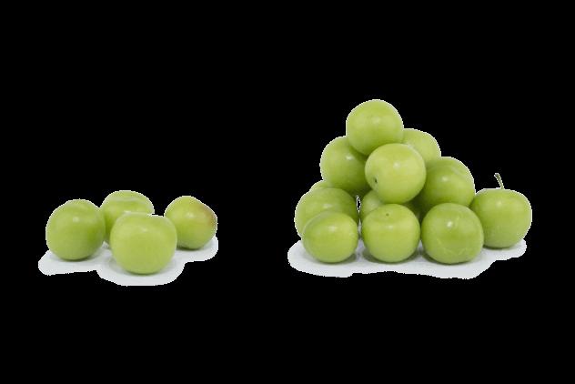 Organik Yeşil Erik (500gr)